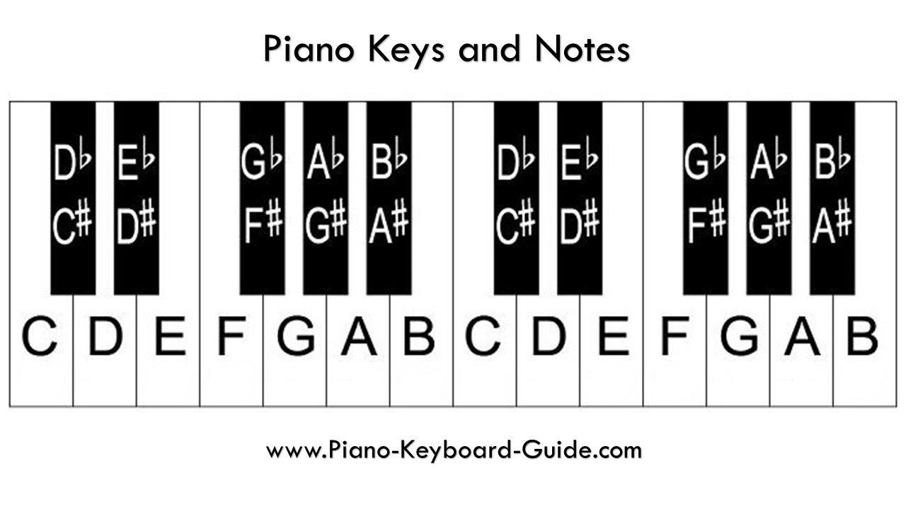 Piano Notes And Keys How To Label The Piano Keyboard In 2020 Piano Keyboard Layout Piano Chords Chart Piano Sheet Music Letters