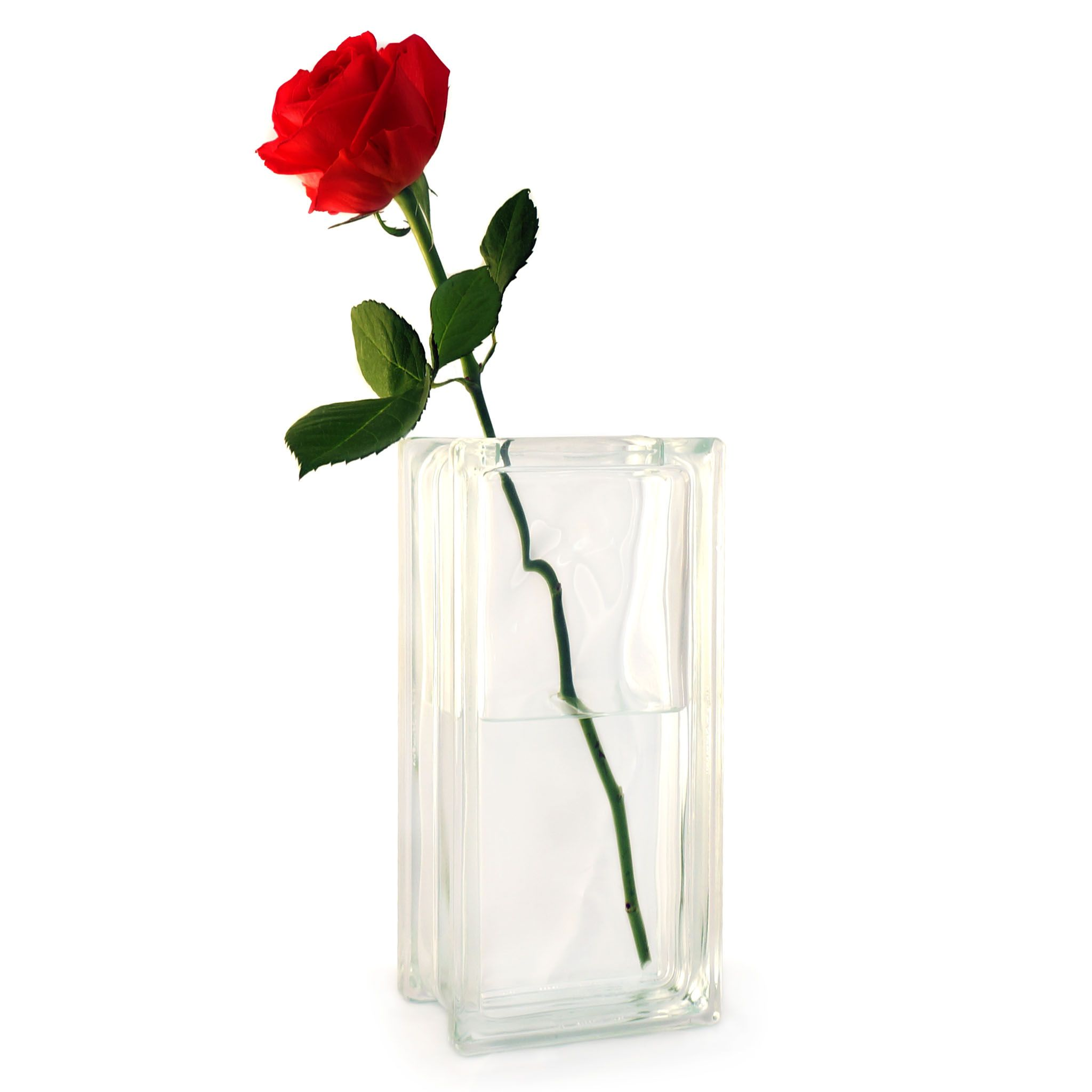 Single Red Rose In A Glass Block Vase Lovely Romantic