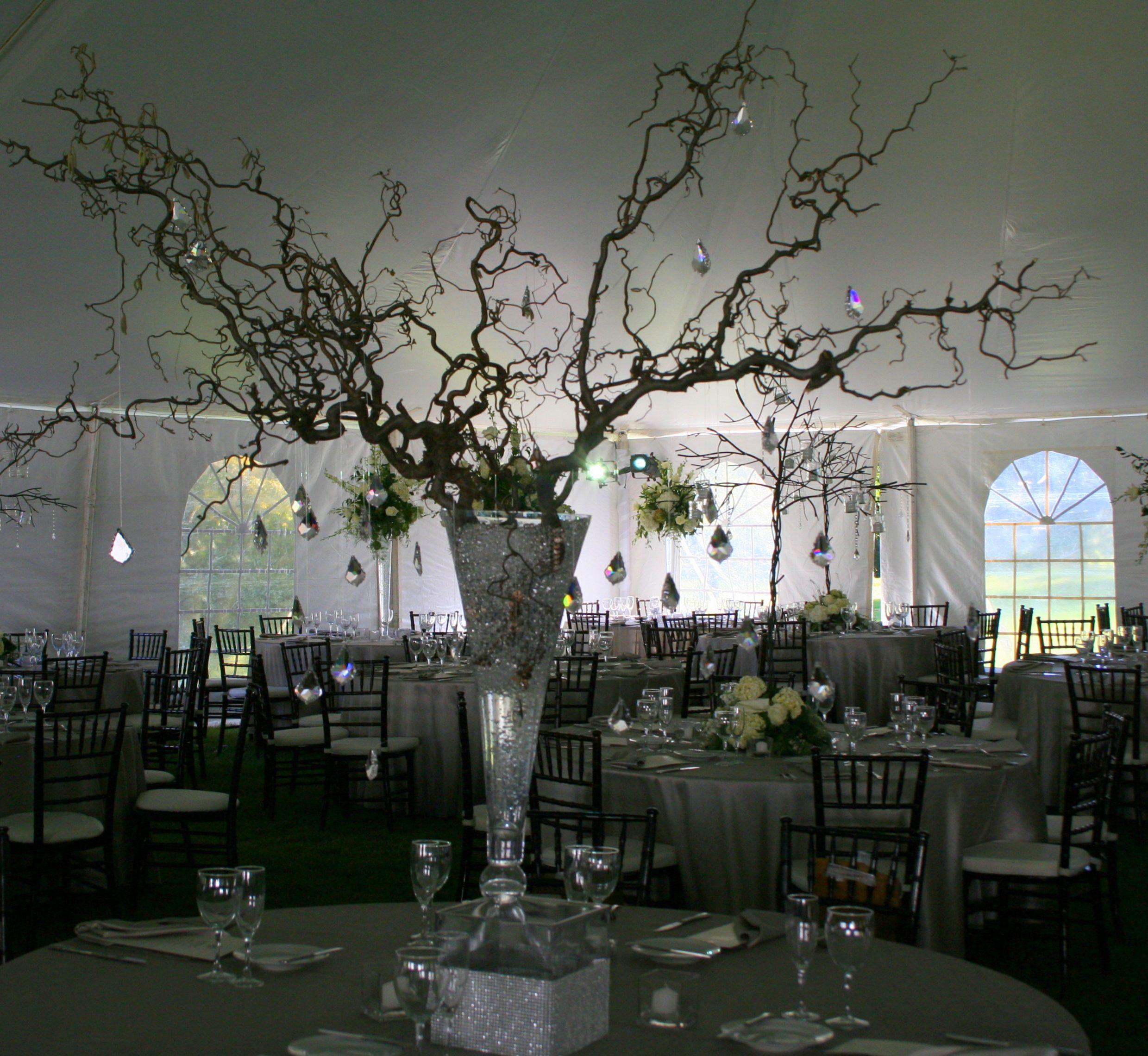 Beach wedding venues in san diego  beautiful and elegant with the crystal ornaments  Wedding Decor