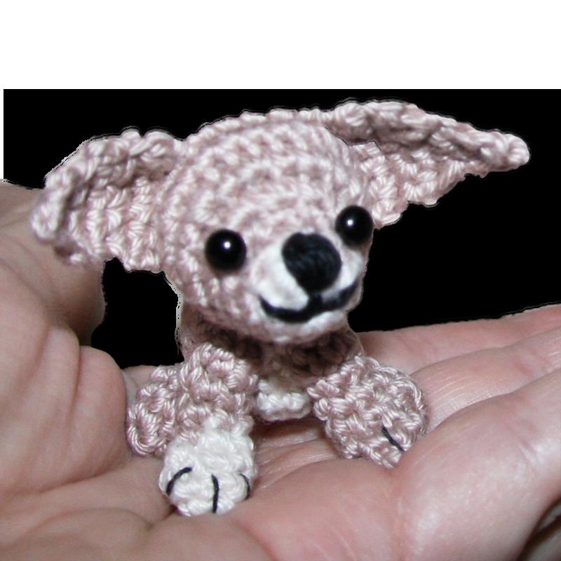 Mini Chihuahua Kostenlose Anleitung Hunde