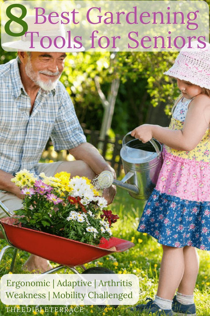e32ab988b1cfb2174bf6c04b6ea4efe1 - Benefits Of Gardening For The Elderly