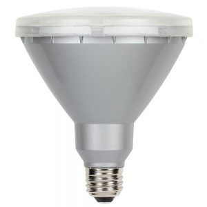 Led Outdoor Flood Light Bulbs Adorable Par38 18W Led Outdoor Flood Light Bulb White  Httpnawazsharif Design Inspiration