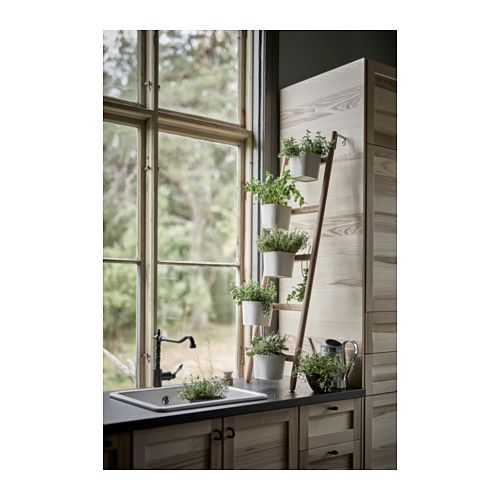 SATSUMAS Plant stand with 5 plant pots, bamboo, white Plants