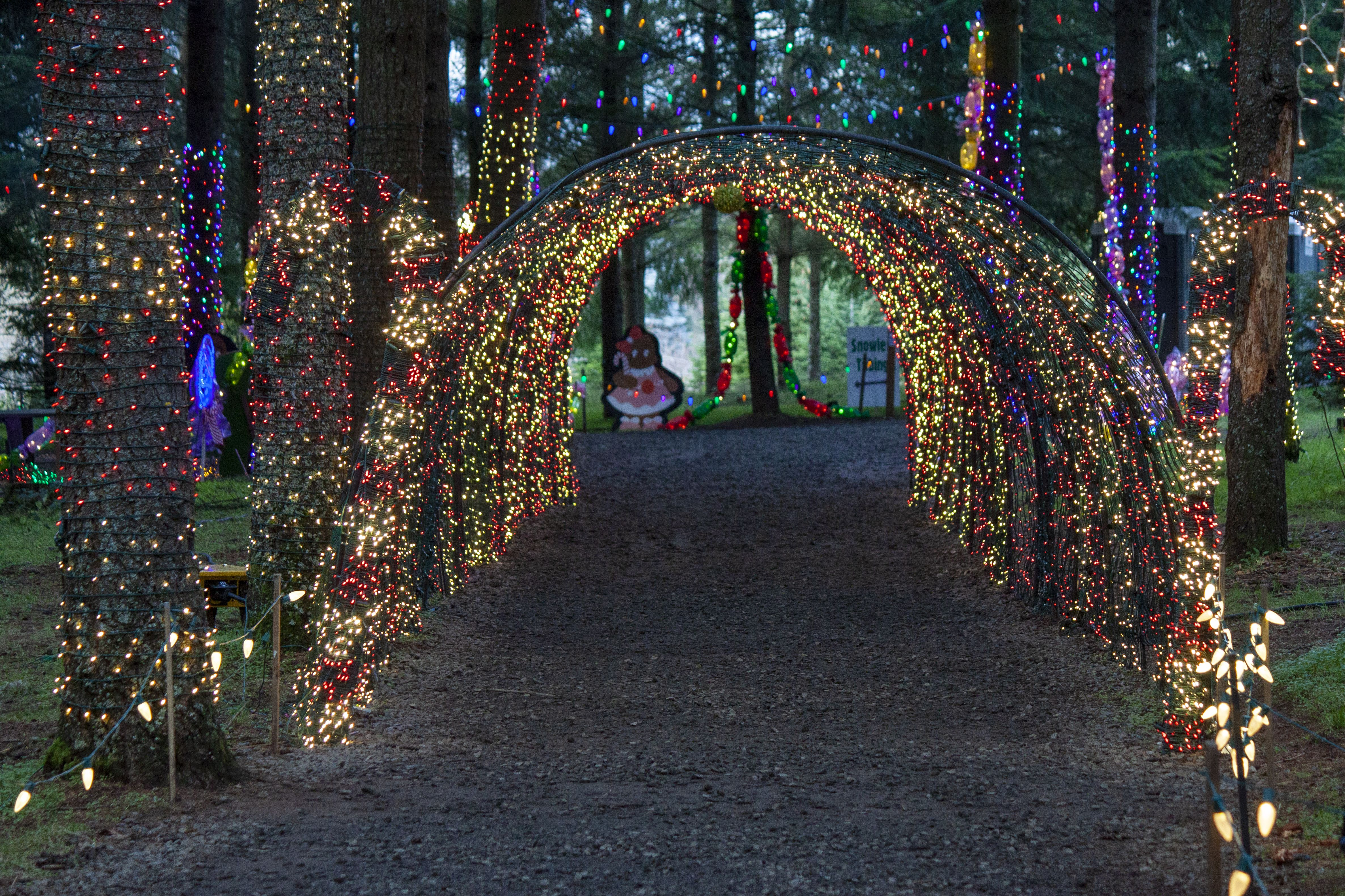 Over A Million Christmas Lights in 2020 Holiday festival