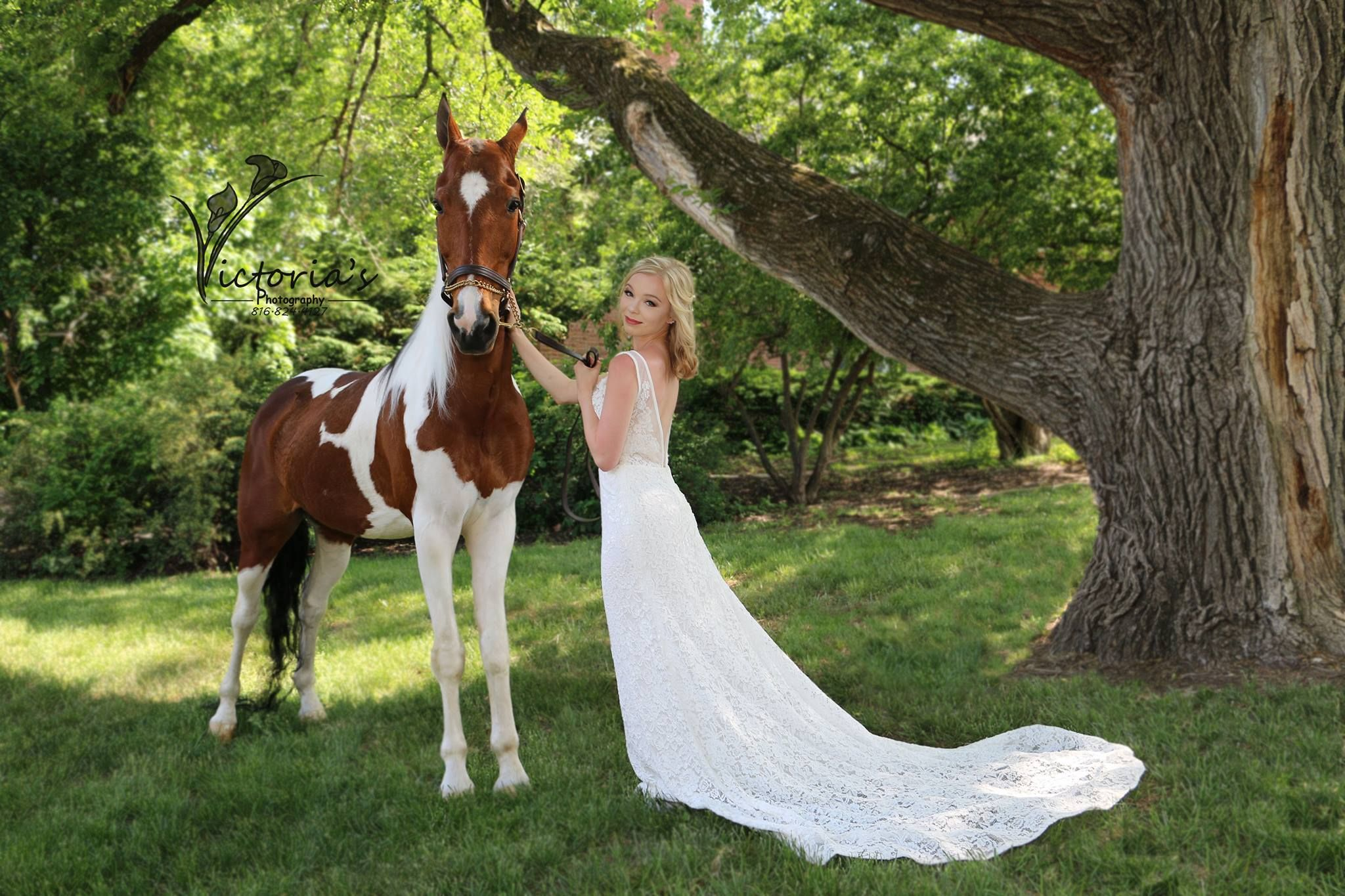 Claire model shoot kc weddings an american saddlebreed horse