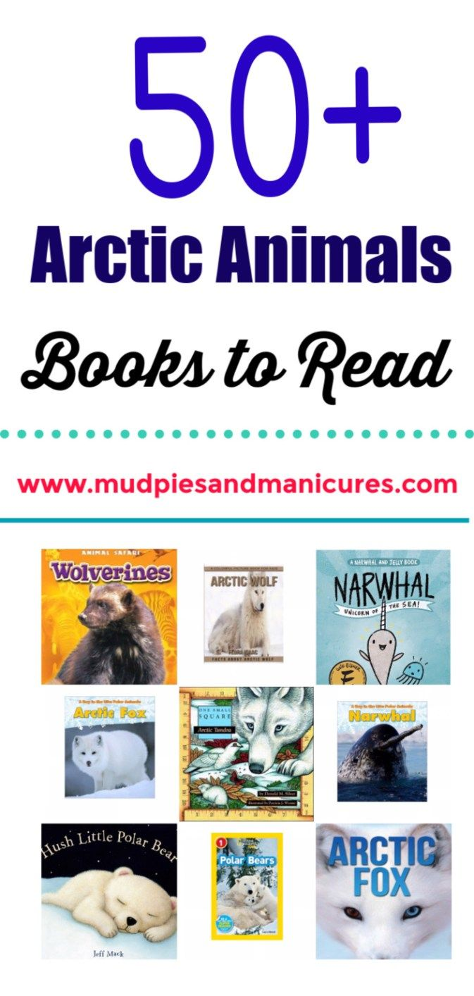Arctic Animals Books to Read Arctic animals, Animal