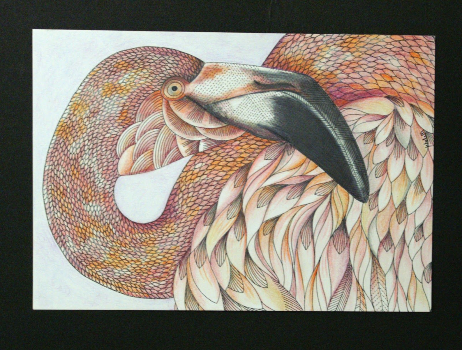 Melody Our Store Manager Created These Beautiful Colored Postcards From The Animal Kingdom Coloring Postcard Book 30 Page Is