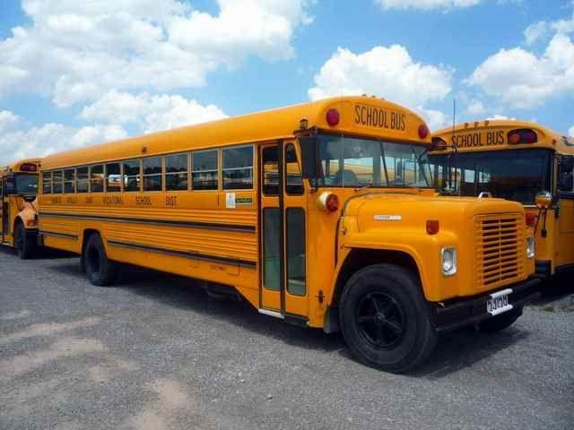 1976 International Superior School Bus Retro Bus
