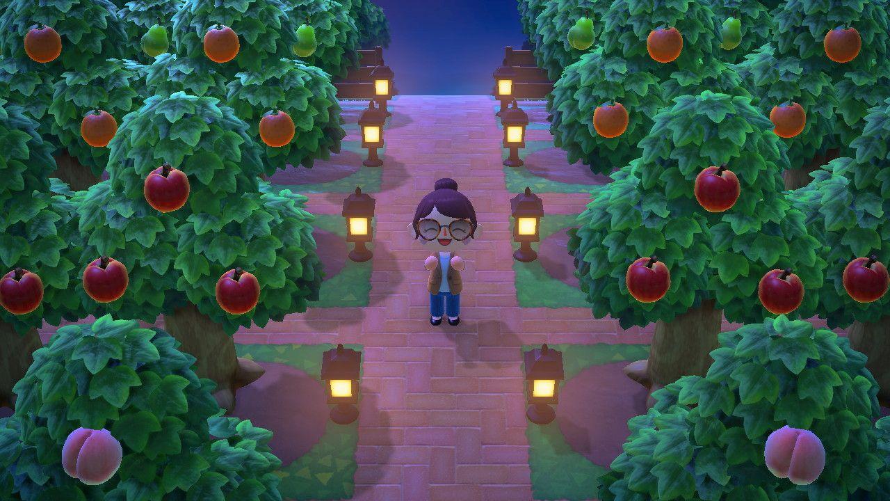 森 園 あつ 果樹
