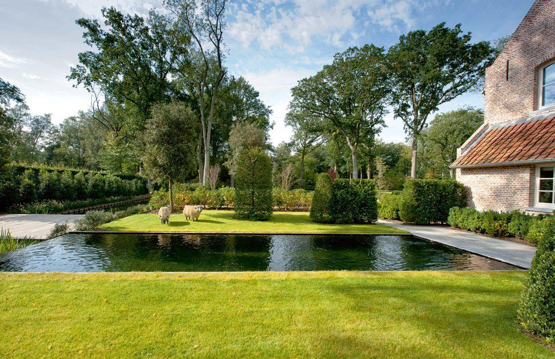 T groene plan zwemvijver schoten tuinen garden pool garden