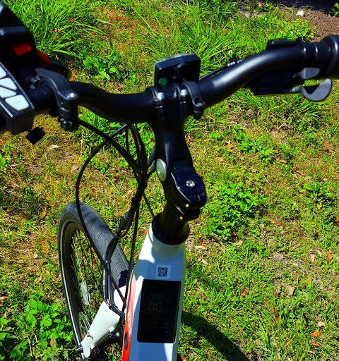 Diverse Bicycling With Electric Bicycles Love For Blix Jetson