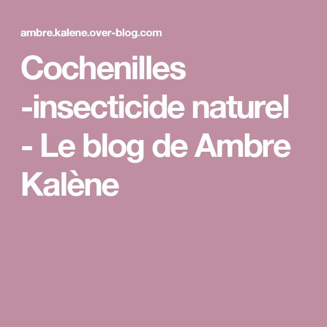 cochenilles insecticide naturel jardinage. Black Bedroom Furniture Sets. Home Design Ideas