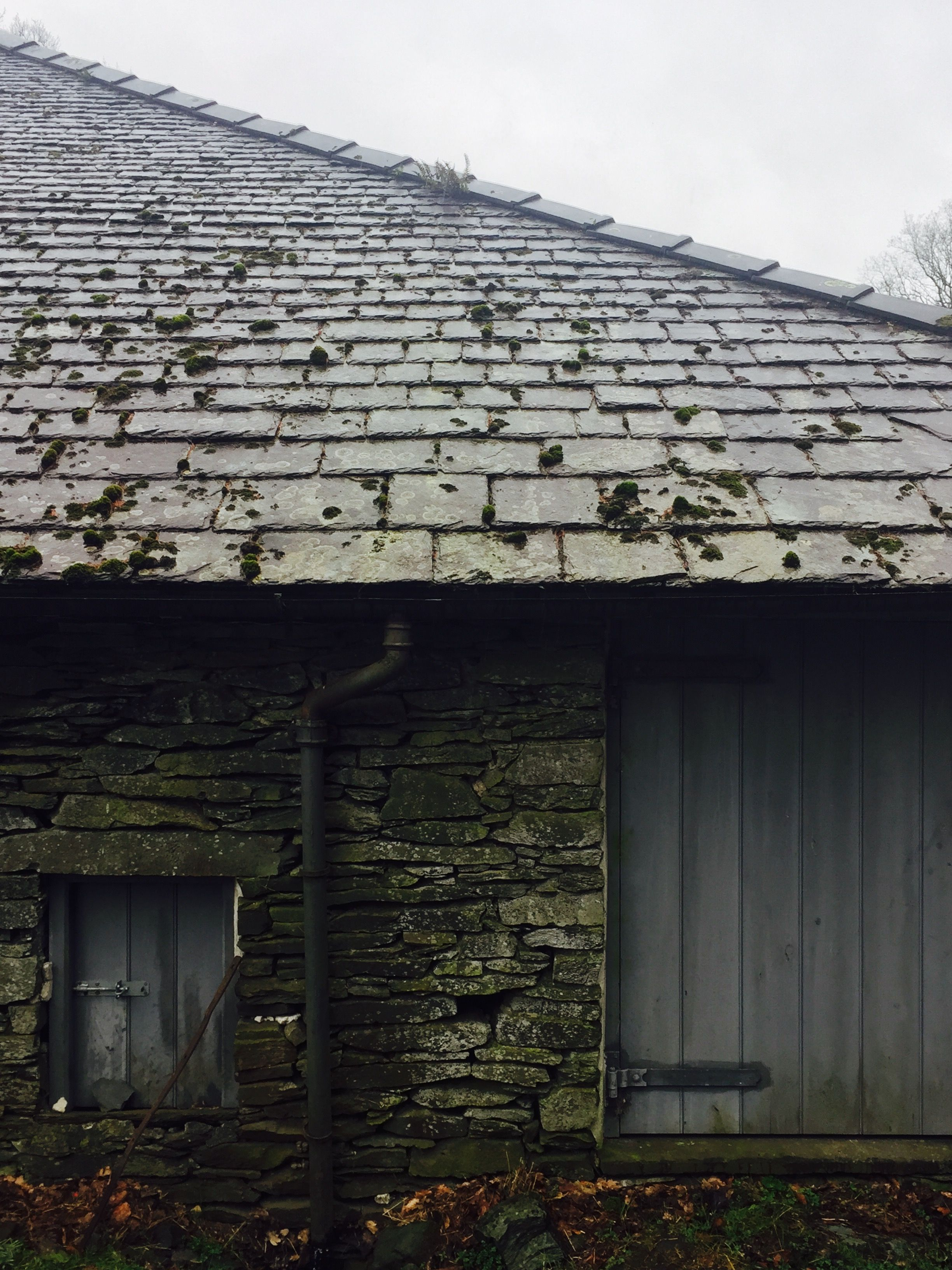 Diminishing courses of natural slate roof tiles  (Scantle