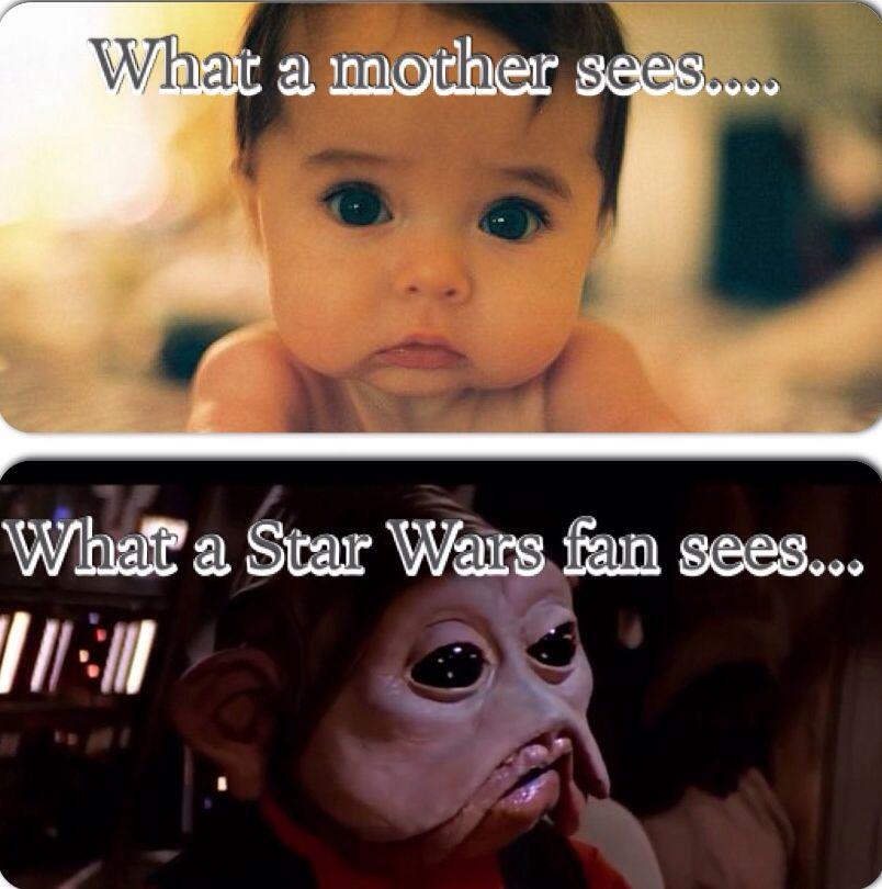 Pin By Audrey Stephenson On Funny Stuff Star Wars Humor Star Wars Memes Star Wars Fandom