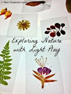 Where Imagination Grows: DIY Nature Slides & Light Play
