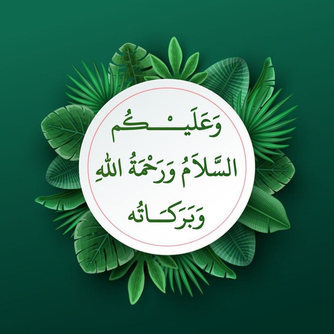 Pin By Sonu On Salam Beautiful Morning Messages Assalamualaikum Image Good Morning Images