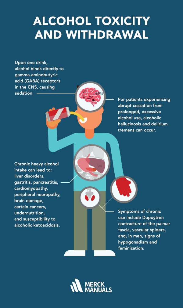 effects alcohol body essay The essay on alcohol abuse definition drinking drink people  issues, such as fat cysts that build up in the liver alcohol also deteriorates the brain and kills the brain cells and  such as nausea, shakiness iv alcohol has many detrimental effects on the body if consumption is not controlled.