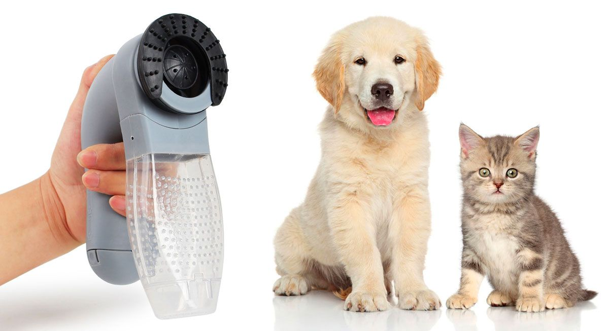 A Veterinarian Created A New Tool That Lets You Vacuum Your Pet S Loose Hair Before It Gets All Over Your Floor Clothes And Furniture Pets Pet Care Your Pet