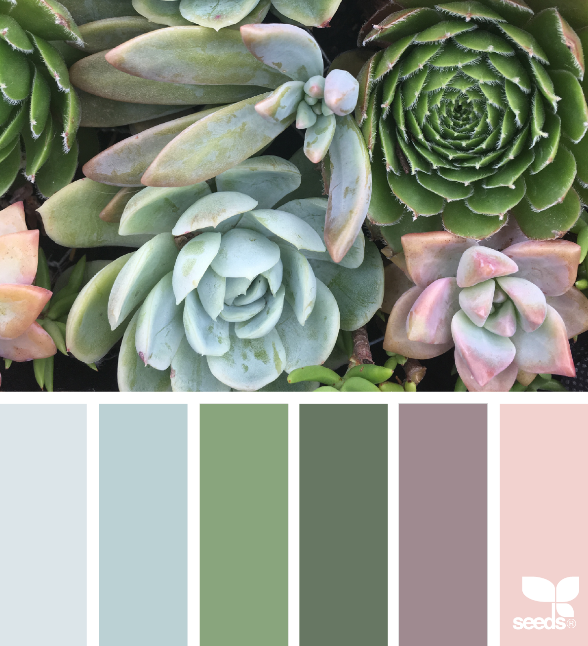 Fresh Hues in 2018 | Color Combinations | Pinterest | Inspiration ...