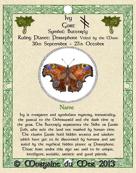 Celtic zodiac signs image by taylor Smallwood on spiritual