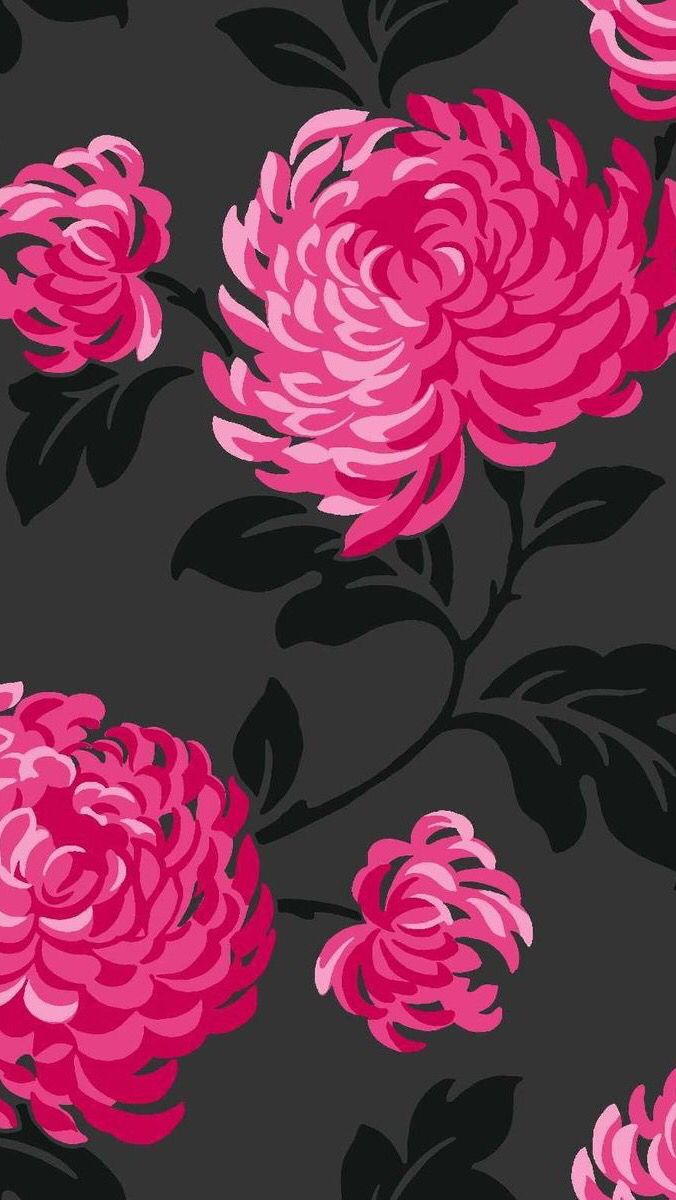 Flowers black hot pink fuschia cute patterns pinterest hot flowers black hot pink fuschia mightylinksfo