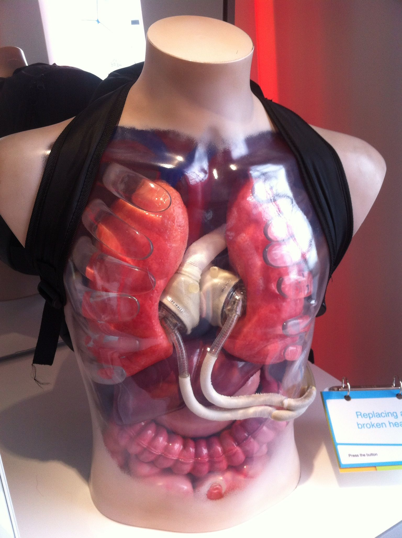#ScienceSnaps 80: Total Artificial Heart. Photo credit: Eleanor Schyma Location: Glasgow Science Centre