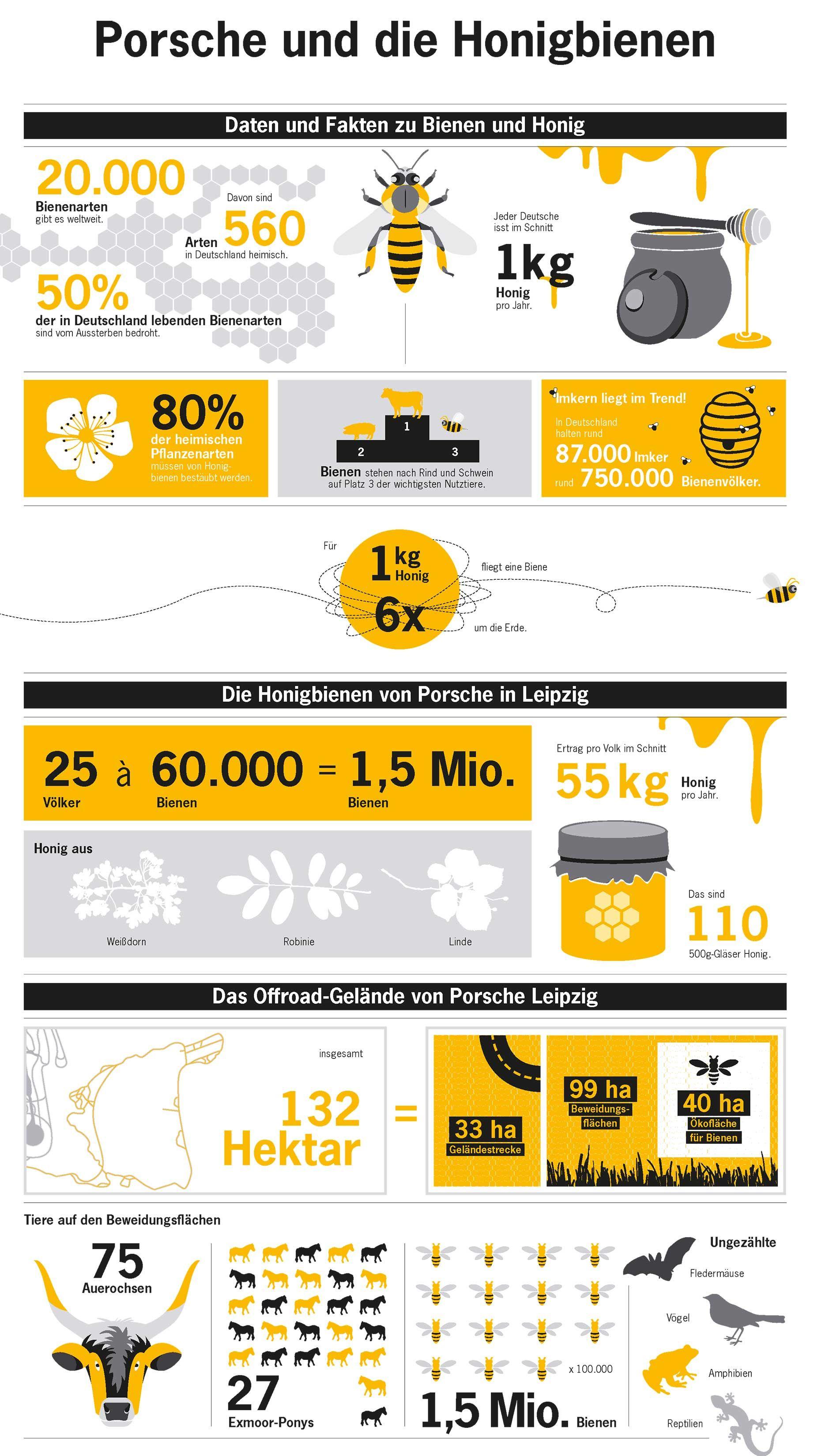 Porsche Siedelt In Leipzig 1 5 Millionen Honigbienen An Bienen Honigbiene Honig