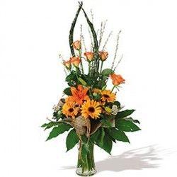 Fiori Gialli Gambo Lungo.Bouquet Majestic Bouquet Plants Garden