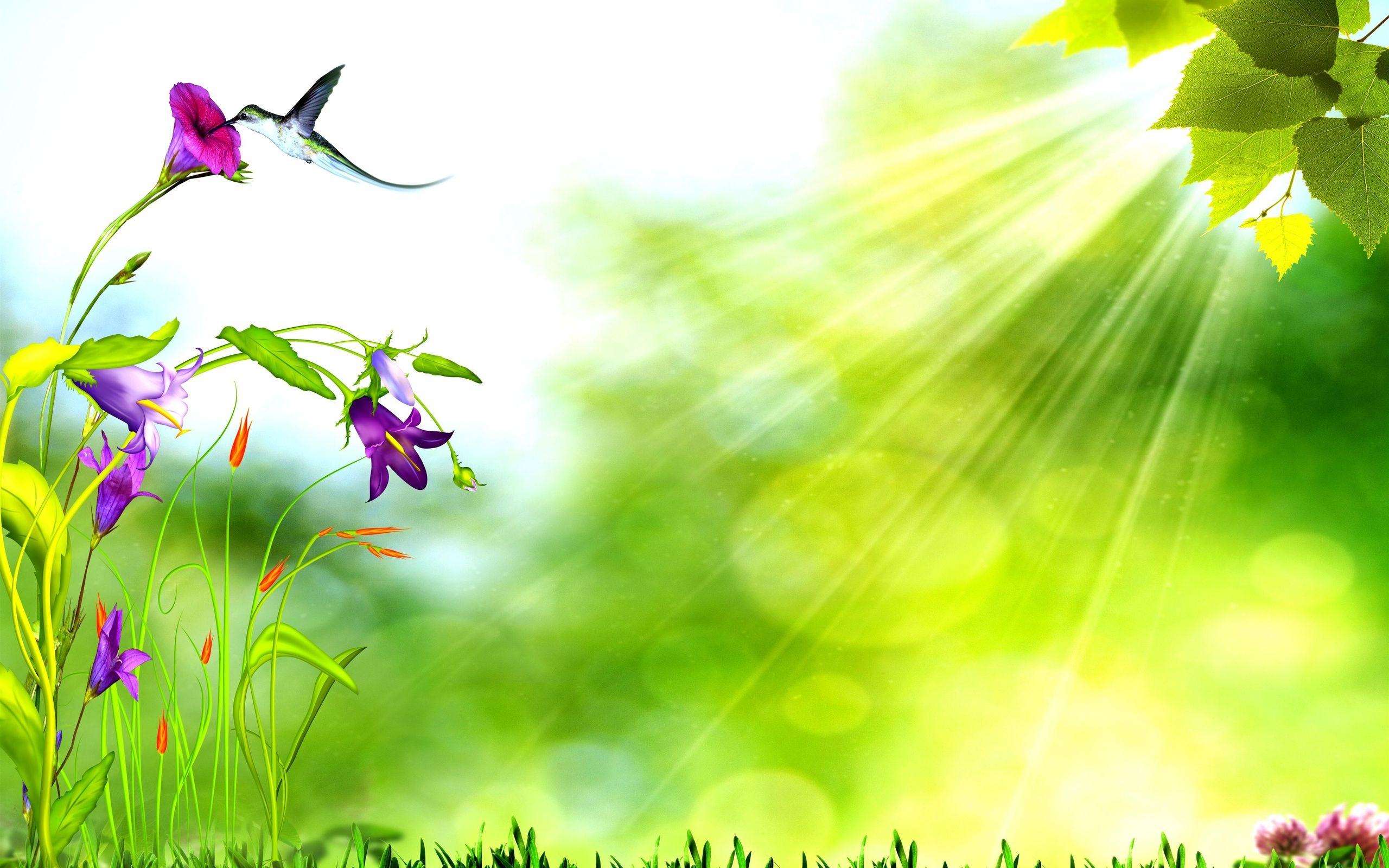 Nature Background Google Trsene Nature Backgrounds Nature Background Images Fantasy Background