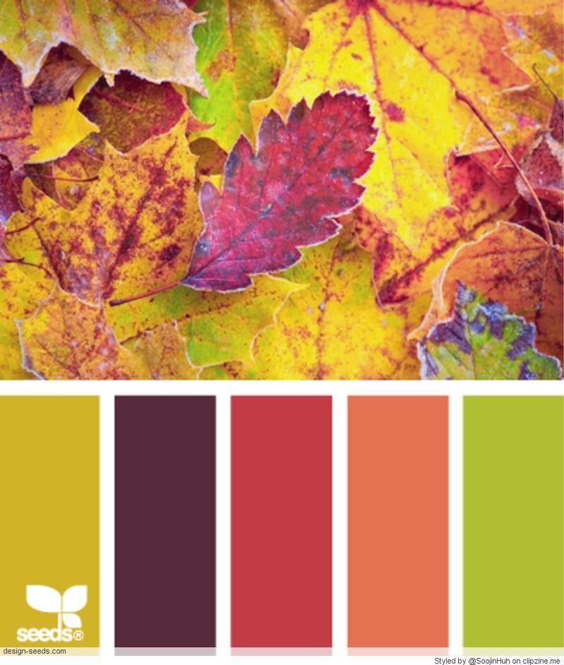 Tabla de colores para pintar paredes free full size of colores pintura pared carta interior - Muestrario de colores para pintar paredes ...