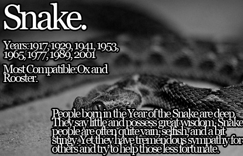 Chinese Zodiac the Snake. People often mistake the Snake to be manipulative. That's not entirely true.