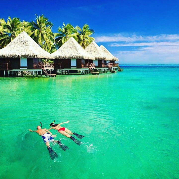 Herkese Mutlu Cumalar  #Maldives seni çağırıyor  Sen de bu yaz tatilini geç planlayanlardansan hiç korkmana gerek yok #biletcepde ile hem en uygun hem de en kaliteli hizmeti alman mümkün. Hem de yurtiçi 5. yurtdışı 3. Seyahatinde ki transferin #airporttransferim den hediye  Ayrıntılar için sosyal medya hesaplarımızdan ya da www.biletcepde.com üzerinden iletişime geçebilirsin  #biletcepde #bilet #ticket #like #emirates #thy #follow #summer #yaz #kum #ramazan #ramadan