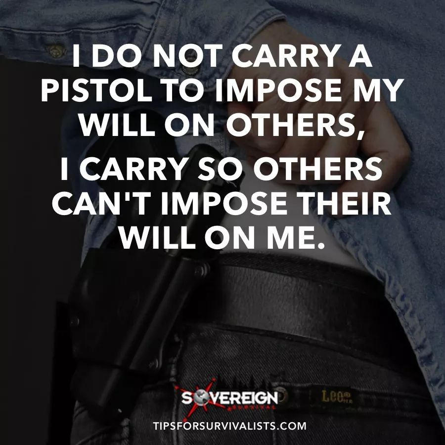 2Nd Amendment Quotes Pinscott Kovach On 2Nd Amendment  Pinterest  Guns Truths