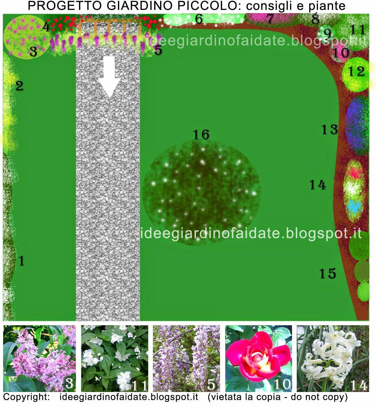 progetto giardino nr 2: piante profumate, perenni e rampicanti ... - Giardino Piccolo Progetto