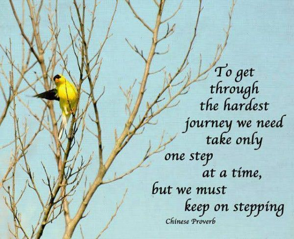 To Get Through The Hardest Journey | The Daily Quotes | Good ...