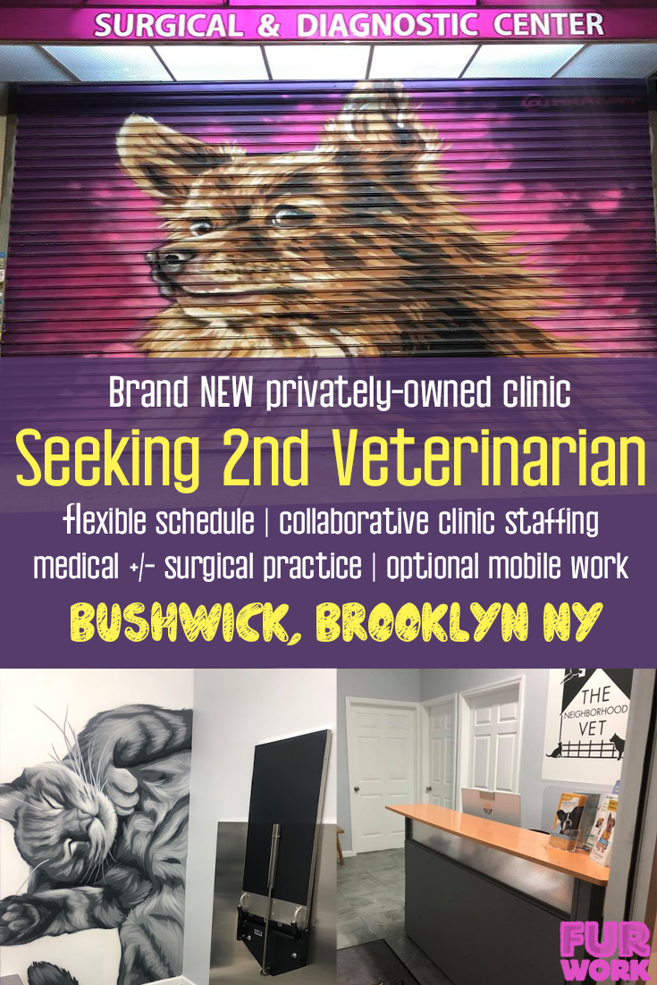 Associate Veterinarian For Well Established Practice Brooklyn Ny