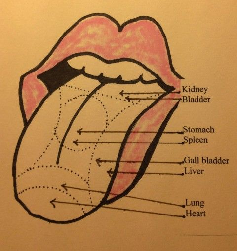Chinese medicine your tongue is a map of your organs healthy chinese medicine your tongue is a map of your organs ccuart Image collections