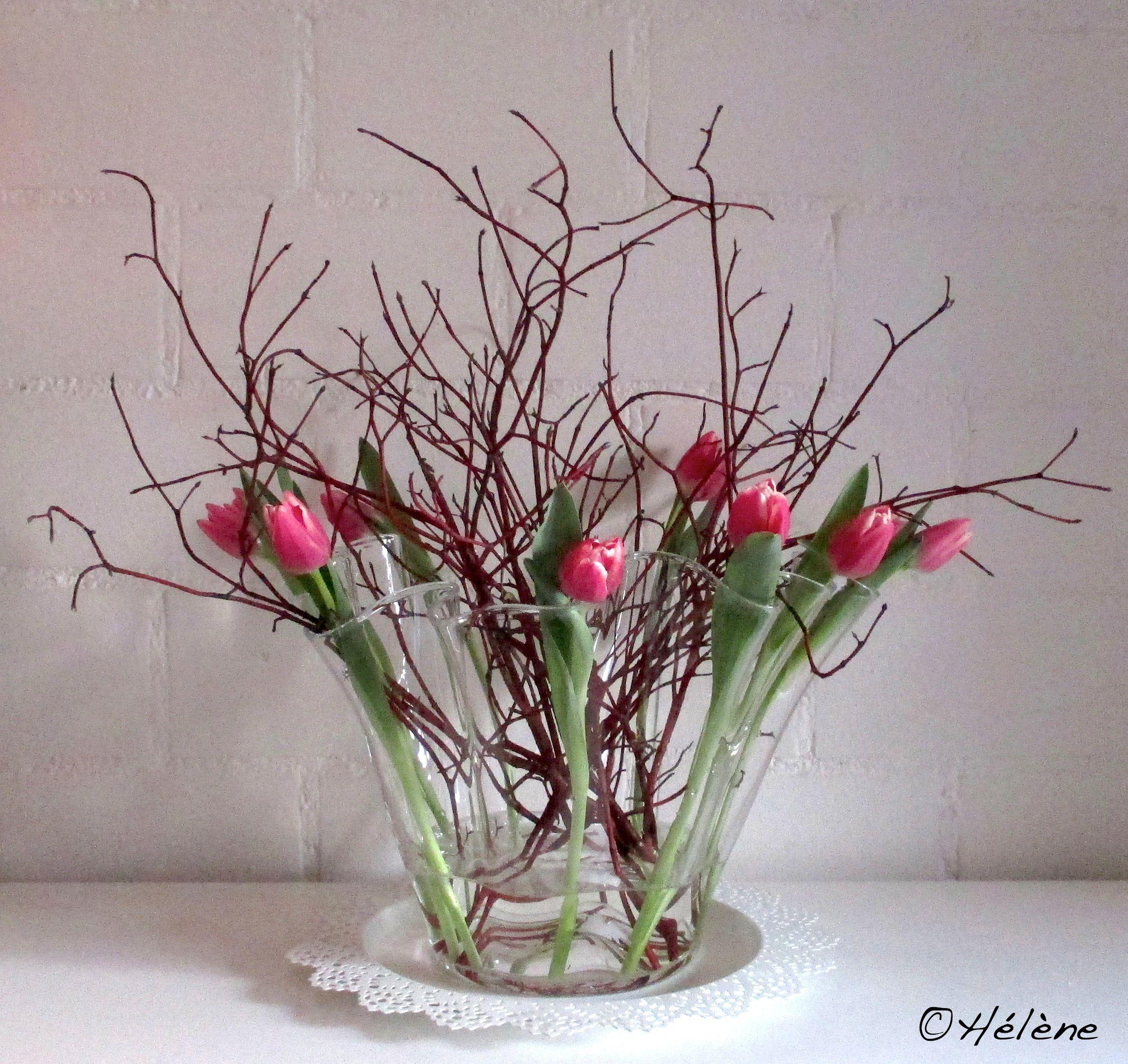 Cornus Tulpen Deko Blumen Dekoration Creative Ideen