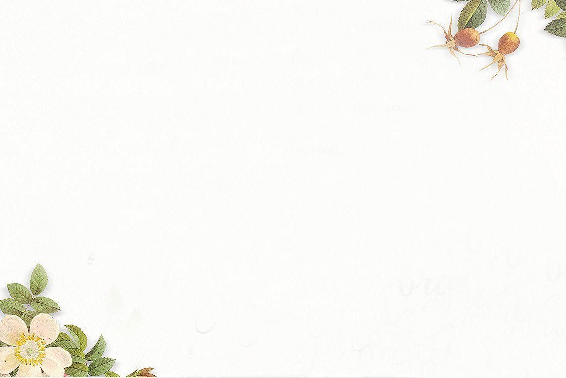 n�n powerpoint đơn gi��n animation effects templates