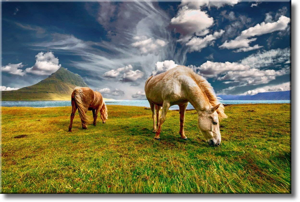 Horses on Field, Nature Landscape Picture on Stretched Canvas, Wall ...