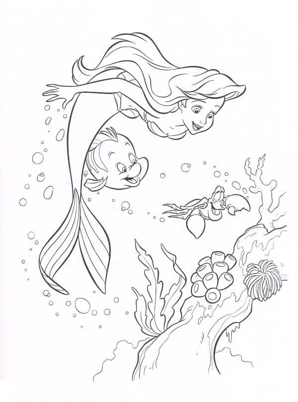 Ariel-Little-Mermaid-and-Friends-Looking-Coral-Reefs-Coloring-Page ...