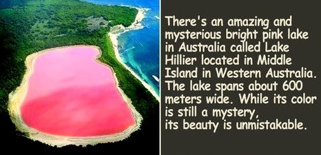 Where Is The Pink Lake Located