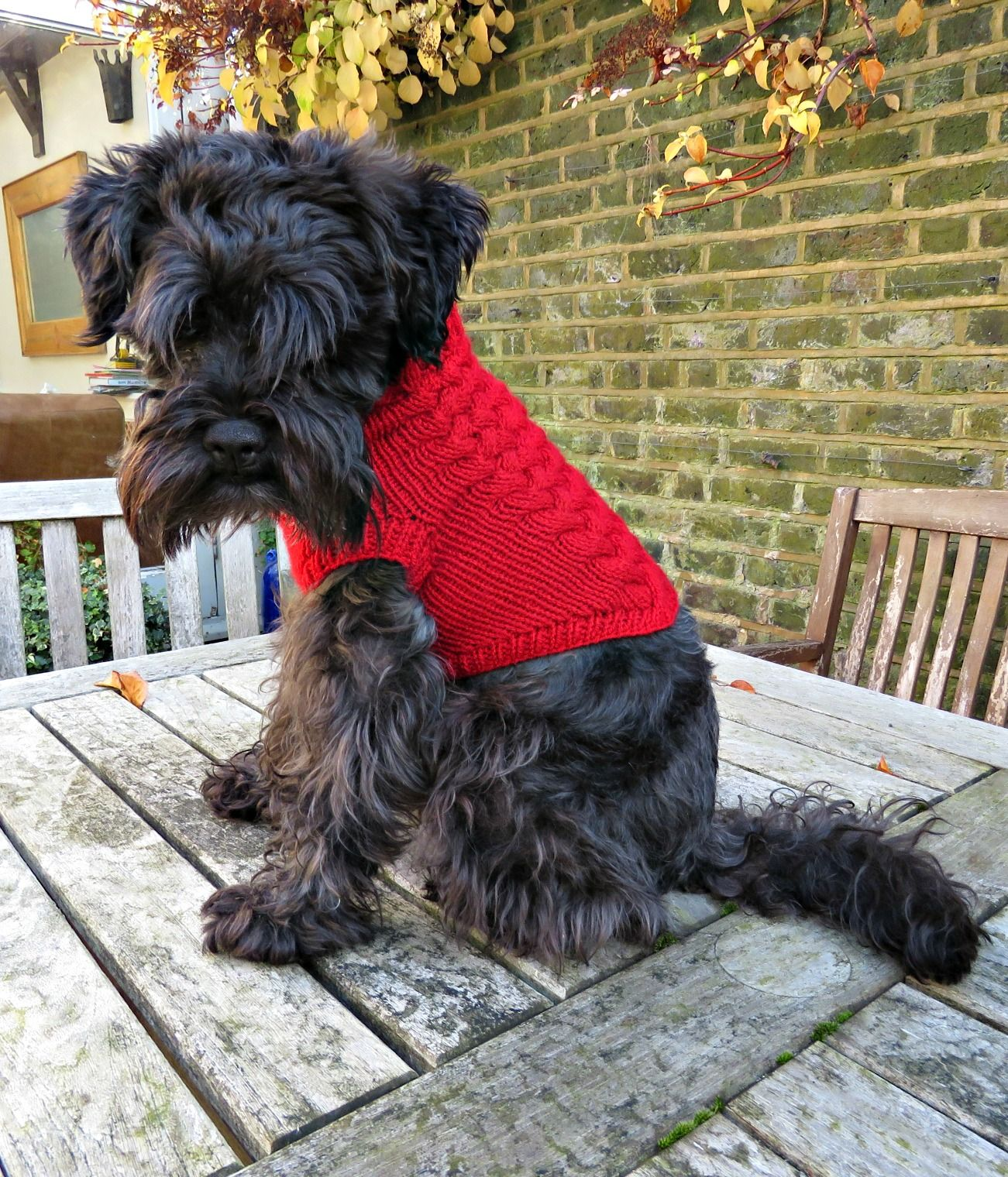 Just saying maxis christmas jumper free knitting pattern maxis christmas jumper free knitting pattern for a dog bankloansurffo Gallery