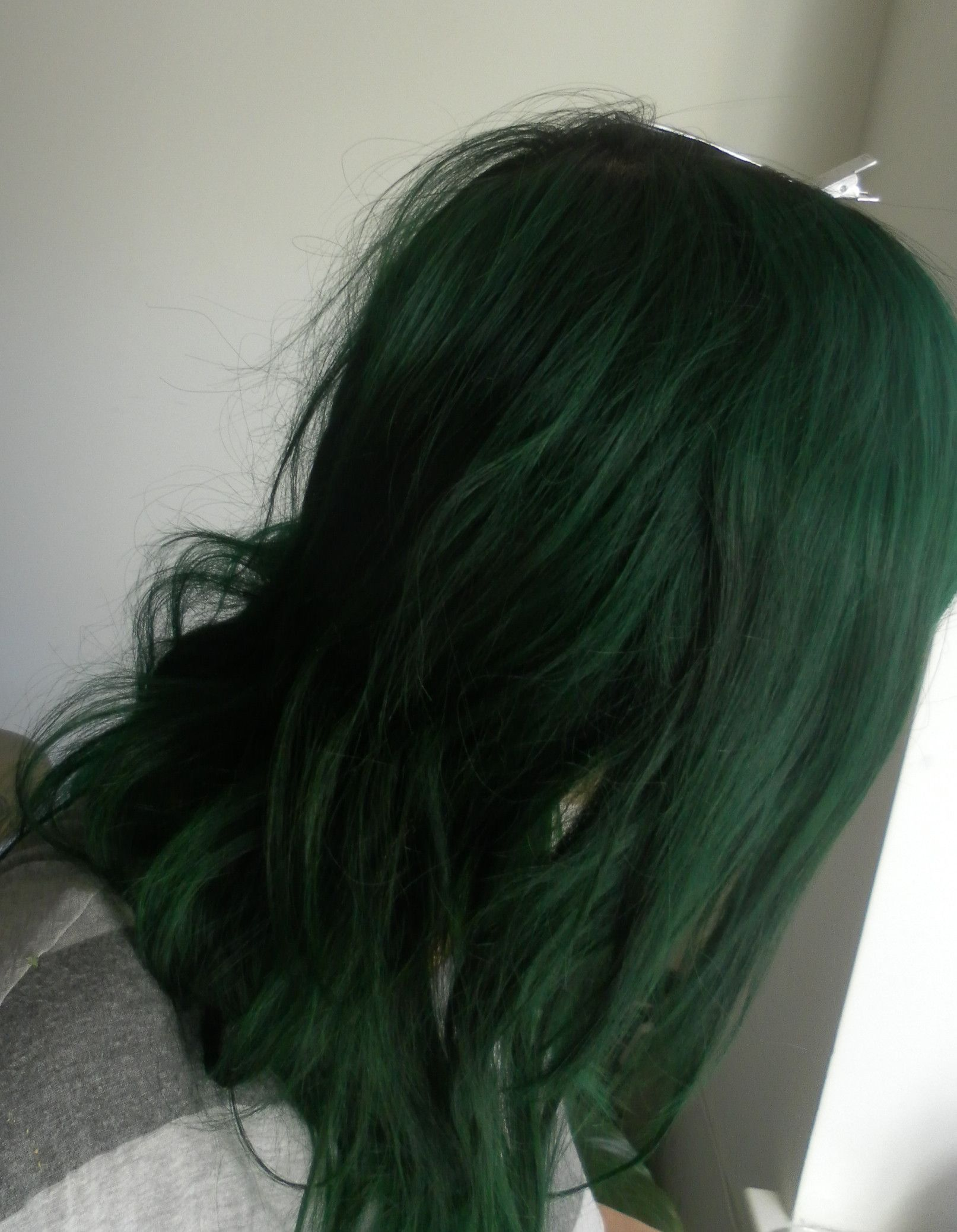 Alternative to black manic panic enchanted forest unbleached hair