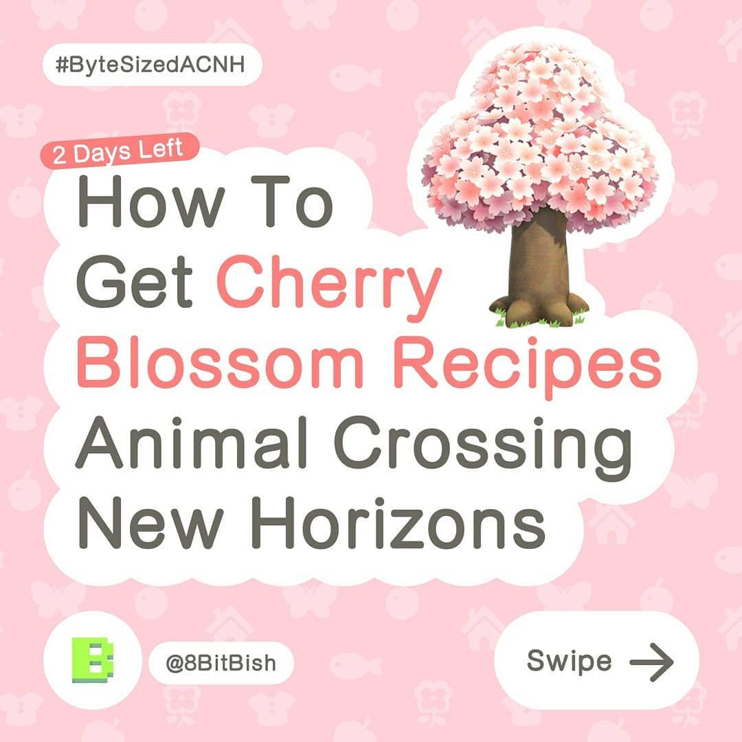 8bitbish Animal Crossing S Instagram Post How To Get Cherry Blossom Recipes In Animal Crossing New Horizons Animal Crossing Cherry Blossom Instagram Posts