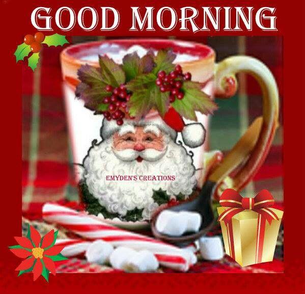 Morning Good Morning Christmas Christmas Greetings Xmas Wishes