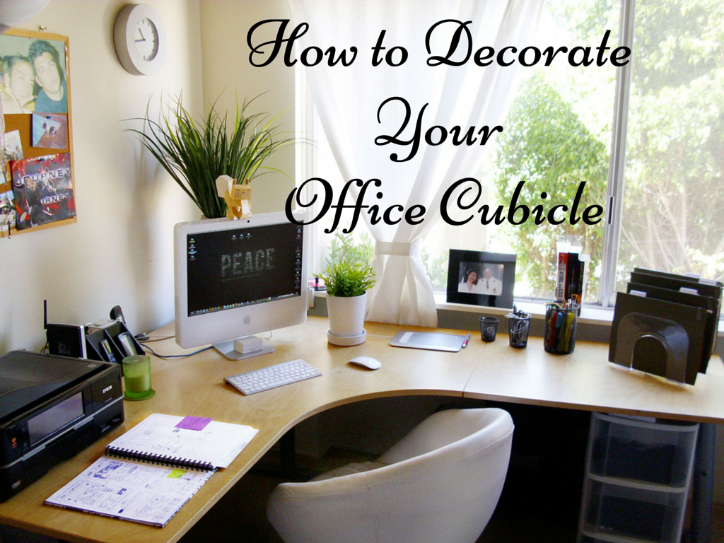 Cubicle Decorating Ideas With Cly