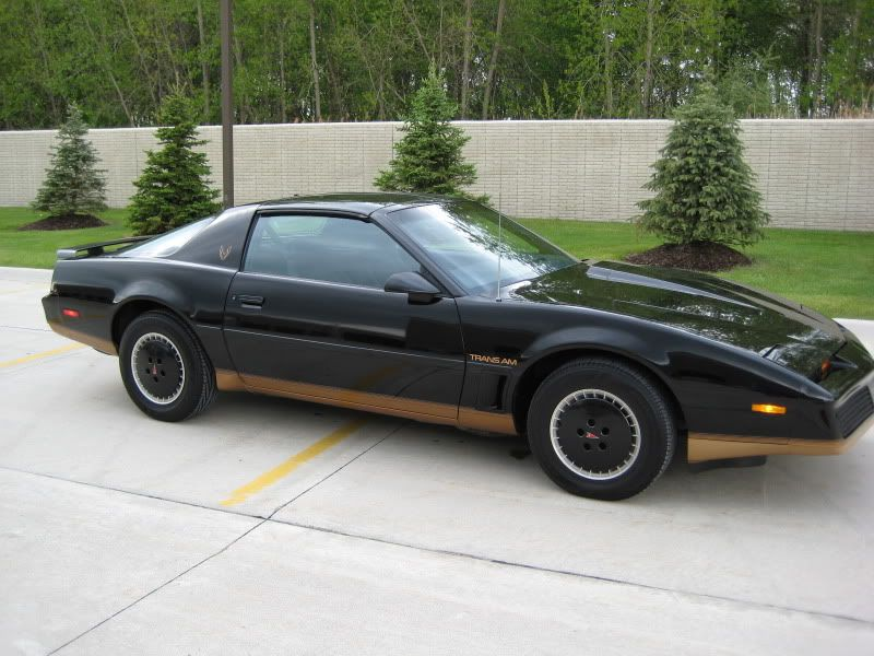 1982 pontiac firebird trans am black and gold recaro edition trans am pontiac firebird trans am pontiac cars 1982 pontiac firebird trans am black