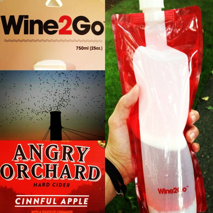 Watching The Swifts At The Park In Portland Late September With My Wine2go Foldable Wine Bottle Wine Bottle Wine2go
