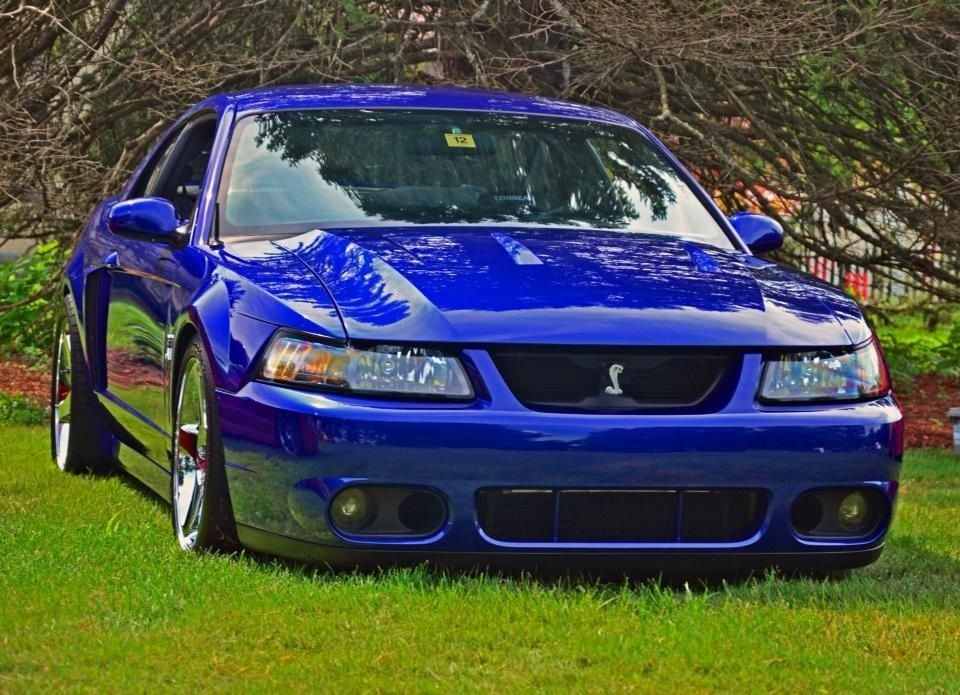 Ford Mustang Cobra hundreds of them out there ugly as shit but I & Ford Mustang Cobra hundreds of them out there ugly as shit but ... markmcfarlin.com